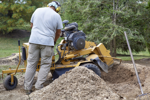 Minnesota Stump Grinding